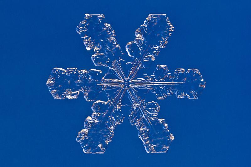 Snowflake, by Steve Begin/flickr/CC BY-NC-SA 2.0