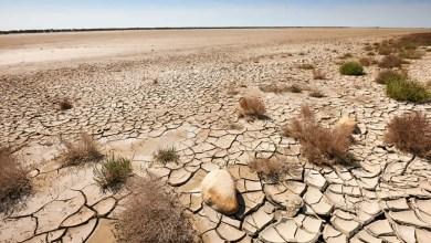 Photo of Cambiamenti climatici: perché l'approvvigionamento idrico è e sarà uno dei più gravi problemi del prossimo secolo