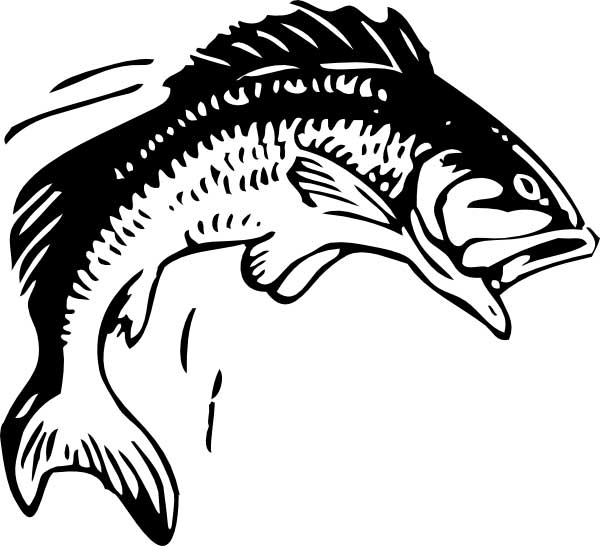 fish coloring page for kids free printable picture