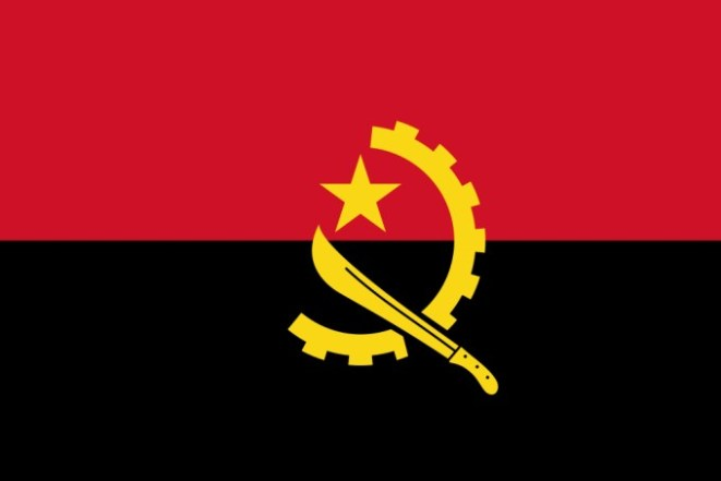 Image result for angola flag