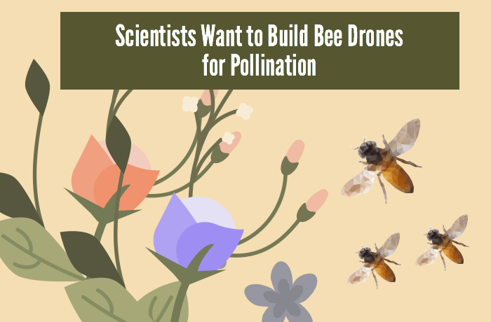 Bee drones for pollination