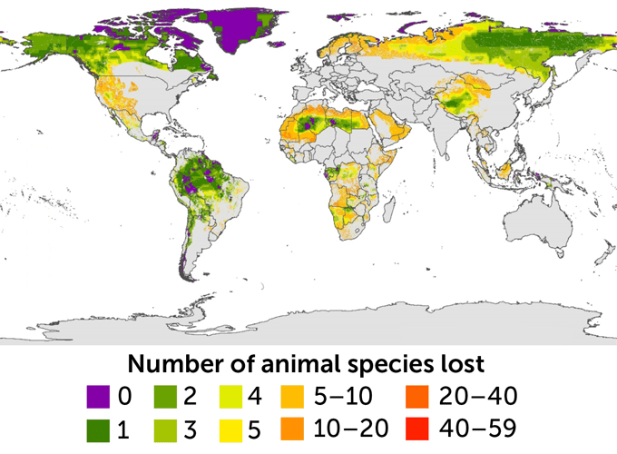 world map showing number of lost animal species