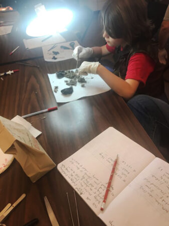 a photo of a kid dissecting coyote scat