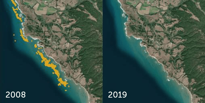satellite images of the California coast in 2008 and 2019