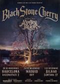blackstonecherry_web