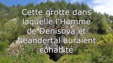 Neandertal, exoplanète, Curiosity, fleurs et cigales