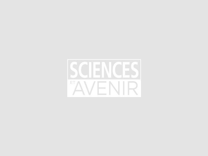 Malgré la pandémie, nouveau record de concentration de CO2 dans l'air (agence américaine)