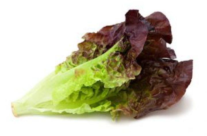 Robab has calcium, potassium, vitamin C