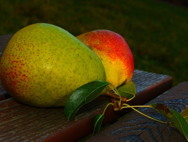 Top 5 Fruits For Weight Loss /How To Lose Weight