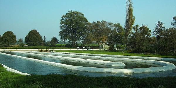 Kwekerij waar micro-algen worden gekweekt. Afbeelding: JanB46 (via Wikimedia Commons).