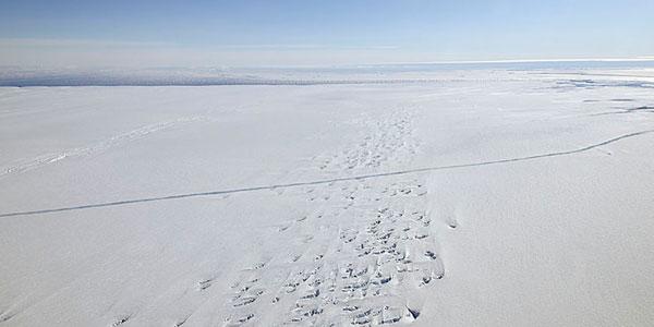 pine island gletsjer
