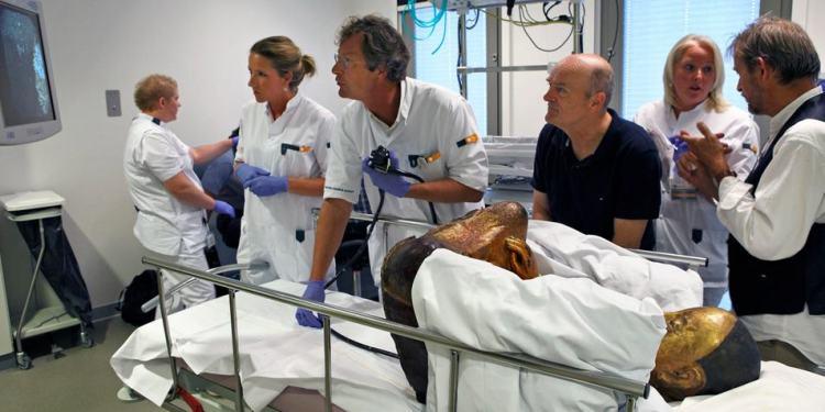 De mummie wordt onderzocht. Afbeelding: Jan van Esch.