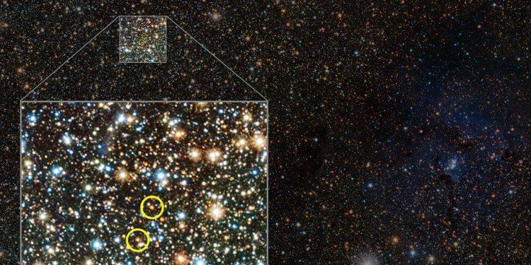 De twee ontdekte sterren. Afbeelding: ESO / VVV consortium / D. Minniti.
