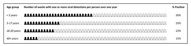 Kinderen jonger dan vijf jaar hebben veel meer weken per jaar één of meer virussen onder de leden dan kinderen tussen de vijf en zeventien jaar oud.