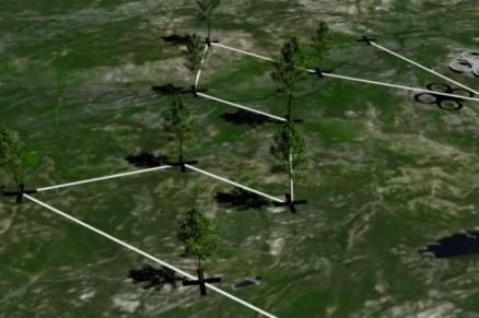 De door drones geplante bomen worden ook daarna nog vanuit de lucht gemonitord. Afbeelding: BioCarbonEngineering.