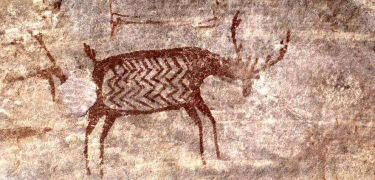 Ook hier is het getekende dier 'opgevuld' met een motiefje. Afbeelding: Bert Schaap.