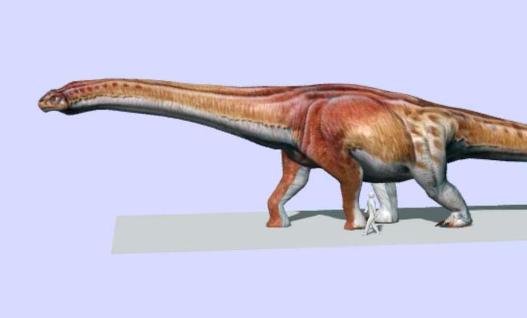 Dit is - voor zover we nu weten - de grootste dino die ooit op aarde heeft rondgelopen
