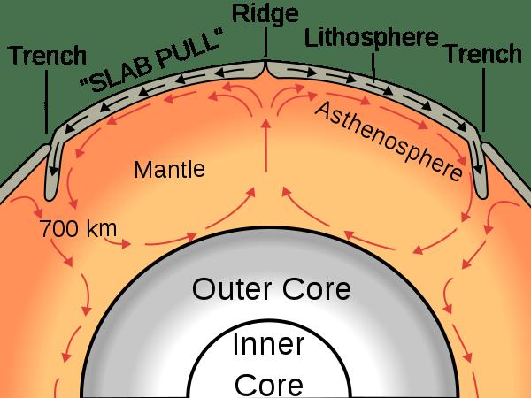 Tutta colpa del mantello (immagine da wikimedia)
