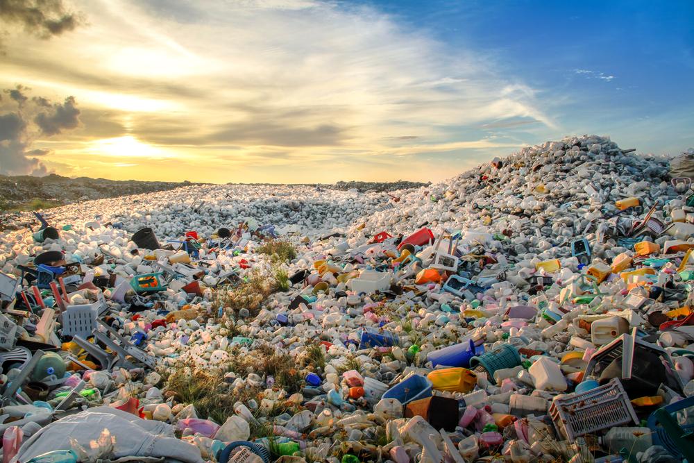 Dalla plastica alla bioplastica