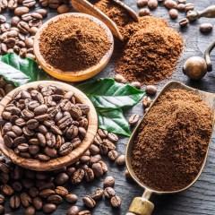 Peggio di api marine caffeinomani – Scientificast #180