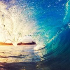 Influenza stagionale e batteri che fanno surf – Scientificast #190