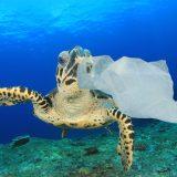 Buchi nello spazio e toppe sull'oceano – Scientificast #220