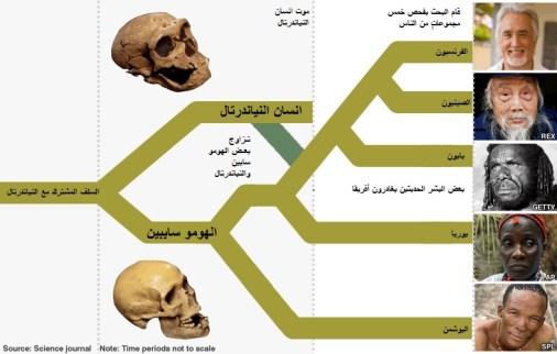 neanderthals_786