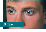 How eyes look at Fear