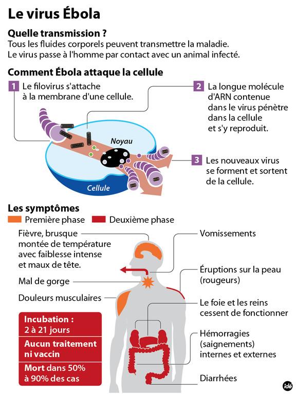 ebola05
