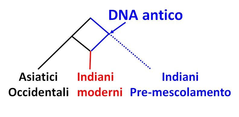 Studiate migrazioni e mescolanza genetica in popolazione di 5000 anni fa a partire dal DNA di persone odierne.