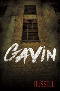 Book cover for Gavin