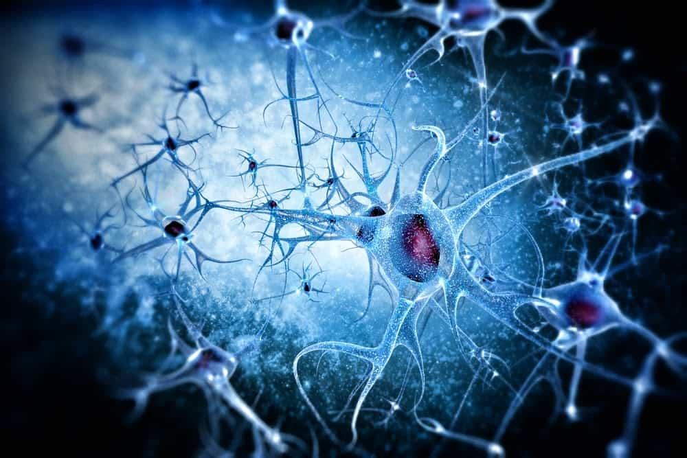Beta Amyloid Plaques >> Antisense-ing Alzheimer's – Club SciWri