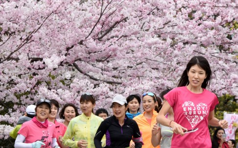 Joggers run past cherry blossom in Tokyo on Sunday. Photo: AFP