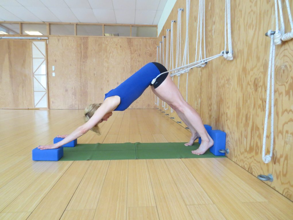 Yoga With Scoliosis Wellness In Motion
