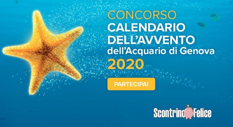 Calendario dell'Avvento Acquario di Genova 2020