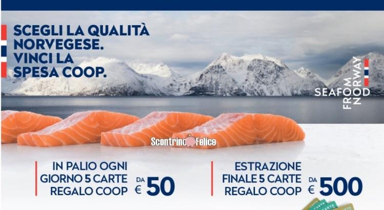 Concorso Salmone Norvegese da Coop