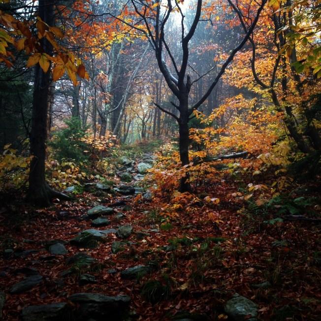 Taken on a 2013 hike in VT on the Appalachian Trail