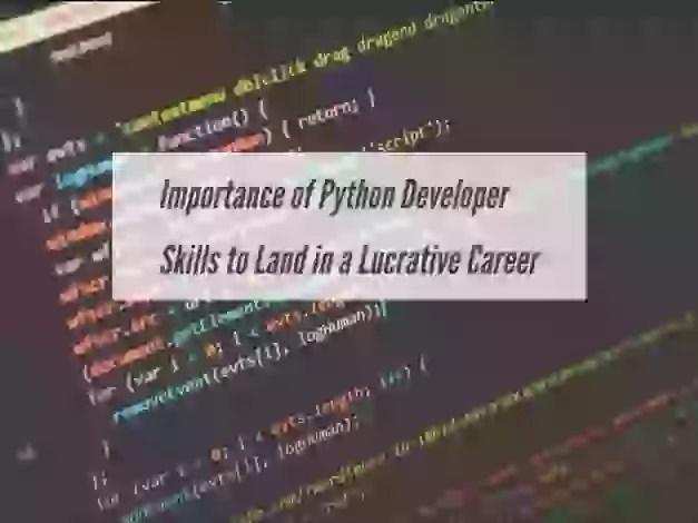 Python developer skills