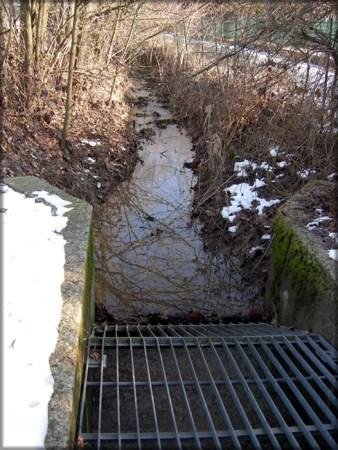 griglia coso acqua inverno