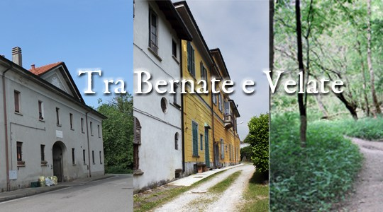 Tra Bernate e Velate