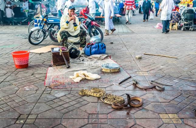 Jamaa El Fna, Marrakech - Marocco _2