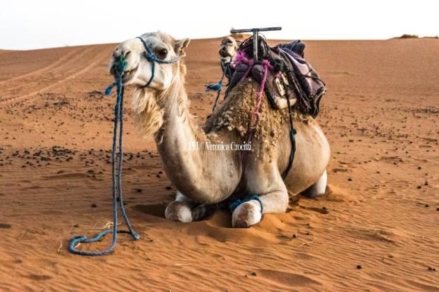 Merzouga - Sahara Desert, Marocco _6