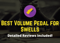 best volume pedal for swells