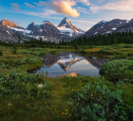 landscape photography of Mt. Assiniboine reflecting in a pond in Mount Assiniboine Provincial Park