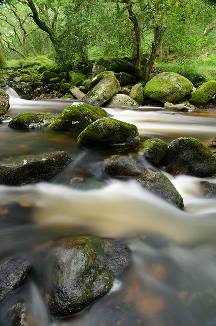 new-landscape-shaugh-prior-water-flow-2