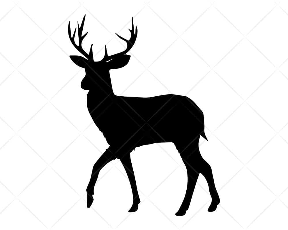 Download Deer 8 SVG Cut Files for Cricut and Silhouette | Scotties ...
