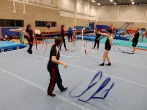 Disability Gymnastics Camp