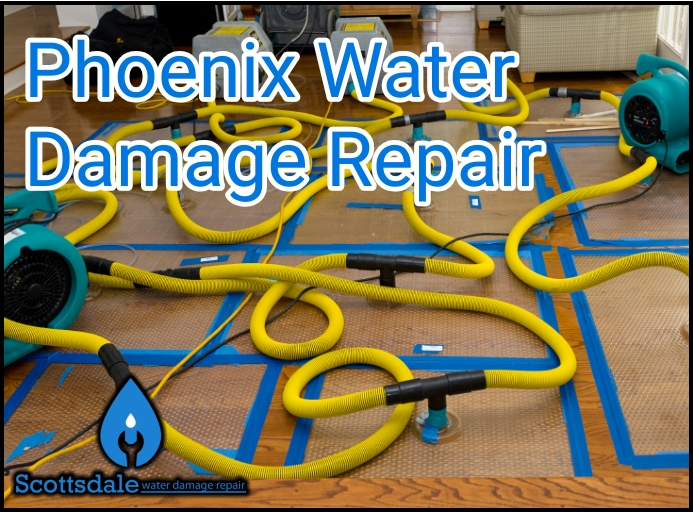 Phoenix Water Damage Repair