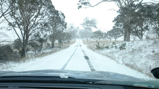 Even more snow on the Ben Lomond road