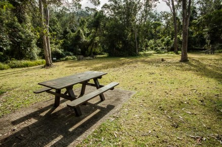 The picnic area